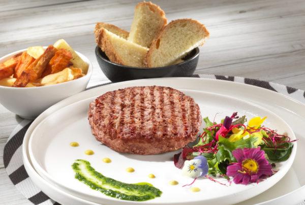 Hamburger bio piatto fiorani e c. azienda produzione carne ambiente